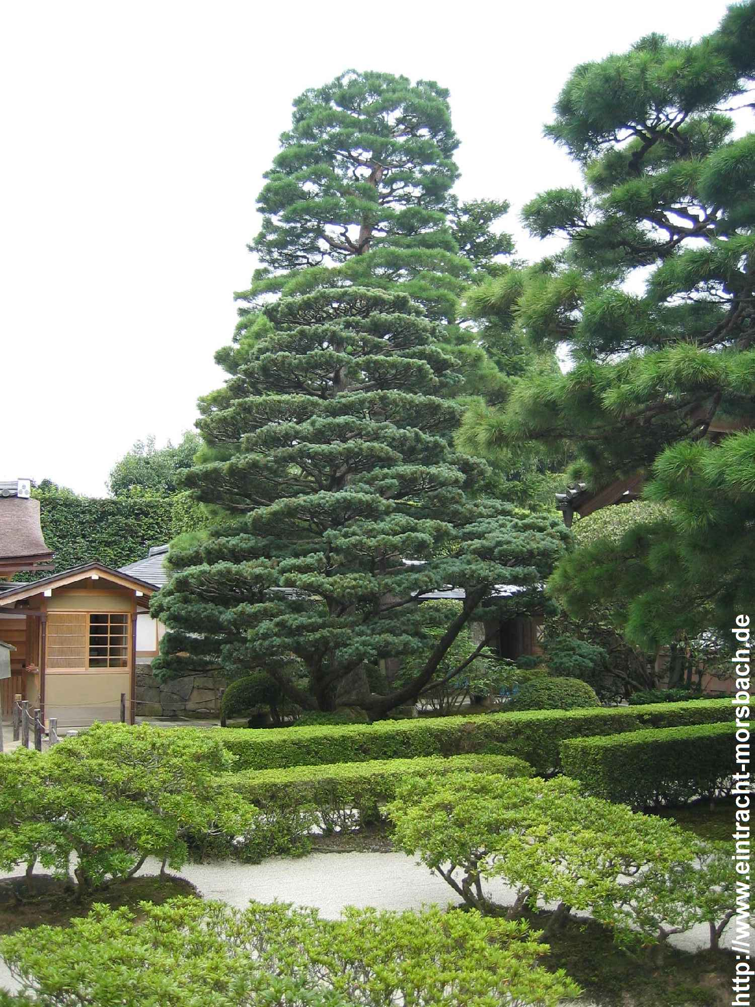 japanreise-2005-207